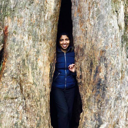 Dr Damayanthi Herath